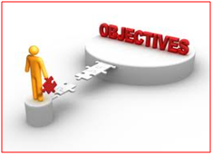 Business and IT Consultancy Objectives