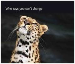 TRAINING AND CHANGE MANAGEMENT
